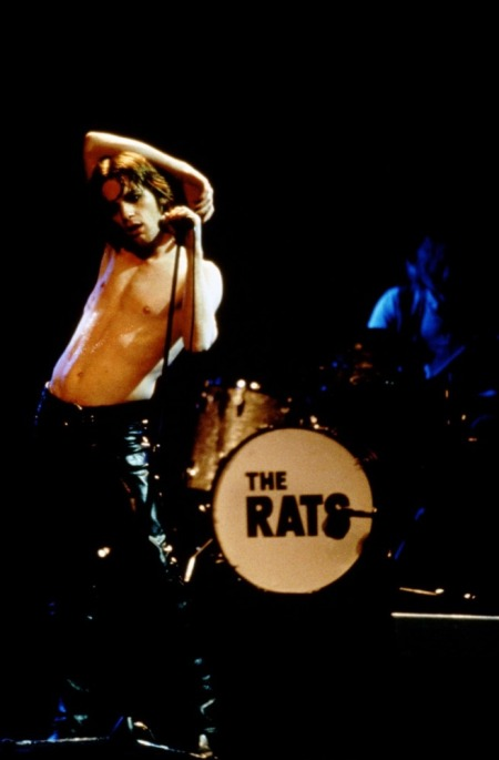 ratsfoiledagain